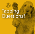 Tapping Questions